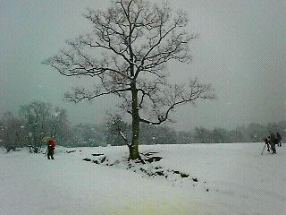 雪の飛火野