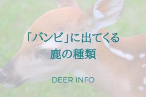 ディズニーアニメバンビに出てくる鹿の種類は?