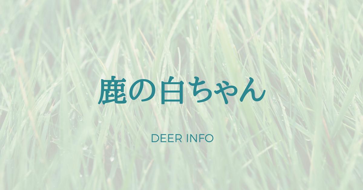 鹿のシロちゃん