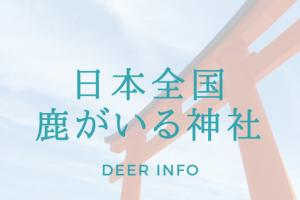 日本全国鹿がいる神社