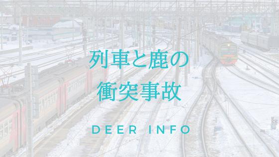 列車と鹿の衝突事故