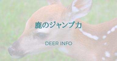 鹿のジャンプ力