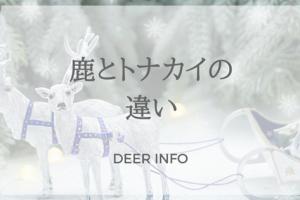 鹿とトナカイの違い